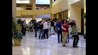 National Flash-Mob Day:  February 19, 2011 (LR, AR at location 1)
