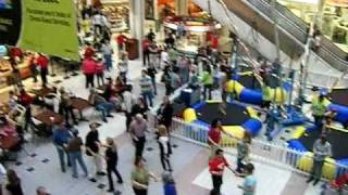 National Flash-Mob Day:  February 19, 2011 (location 2)
