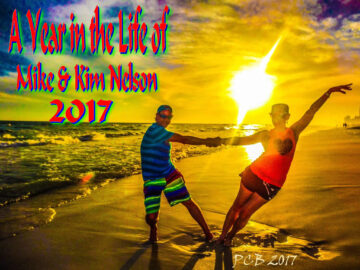 The Year 2017 in the life of the Nelson's